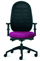 Status Kurum HB Task chair